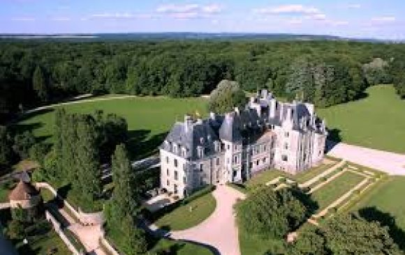 Château de Menetou - Salon